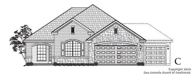 9 Canario Ln, Boerne, TX 78006 (#1417571) :: The Perry Henderson Group at Berkshire Hathaway Texas Realty