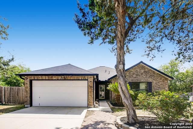 10306 Coralstone Dr, San Antonio, TX 78254 (MLS #1417669) :: Alexis Weigand Real Estate Group