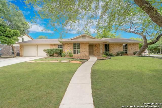 13006 El Sendero St, San Antonio, TX 78233 (MLS #1417725) :: Alexis Weigand Real Estate Group