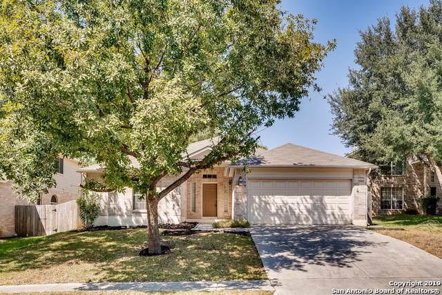 2509 Woodland Village Ct, San Antonio, TX 78154 (MLS #1417738) :: Alexis Weigand Real Estate Group