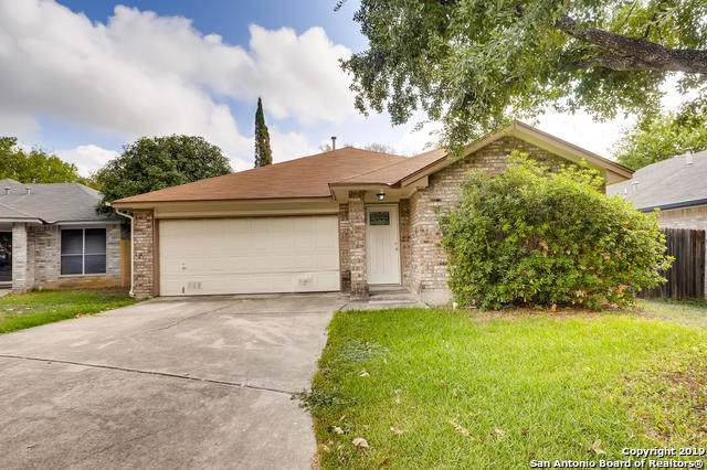 15214 Spring Ranch, San Antonio, TX 78247 (MLS #1417764) :: BHGRE HomeCity