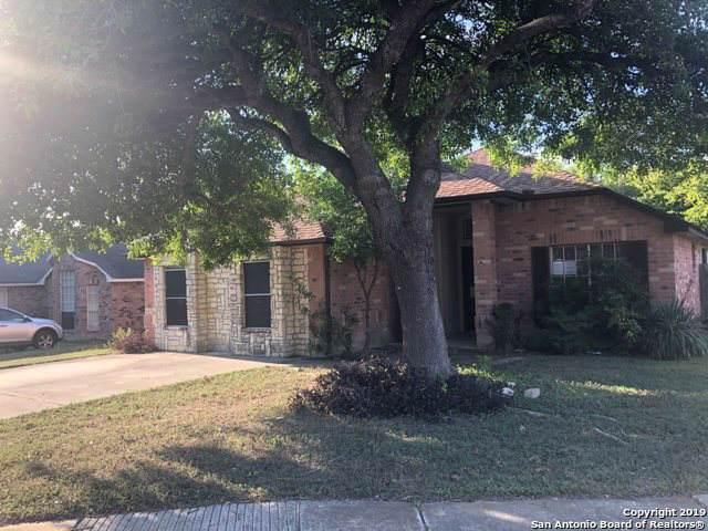 7705 Brunning Ct, Live Oak, TX 78233 (MLS #1417865) :: Carolina Garcia Real Estate Group