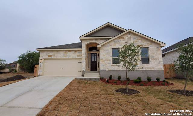 4806 Blue Jasmine, San Antonio, TX 78247 (MLS #1418002) :: The Castillo Group