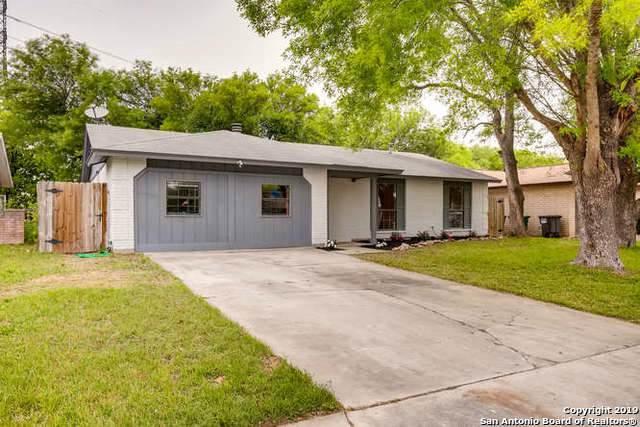 3823 Briar Hollow St, San Antonio, TX 78247 (MLS #1418005) :: Alexis Weigand Real Estate Group