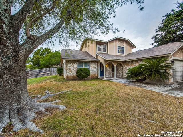 8201 Evert St, San Antonio, TX 78240 (#1418079) :: The Perry Henderson Group at Berkshire Hathaway Texas Realty