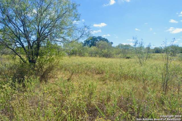 19455 Luckey Rd, Atascosa, TX 78002 (MLS #1418258) :: Legend Realty Group