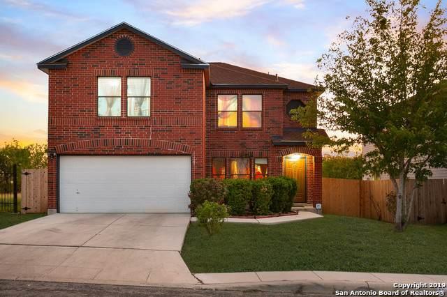 5619 Bypass Trail, San Antonio, TX 78244 (MLS #1418271) :: Reyes Signature Properties