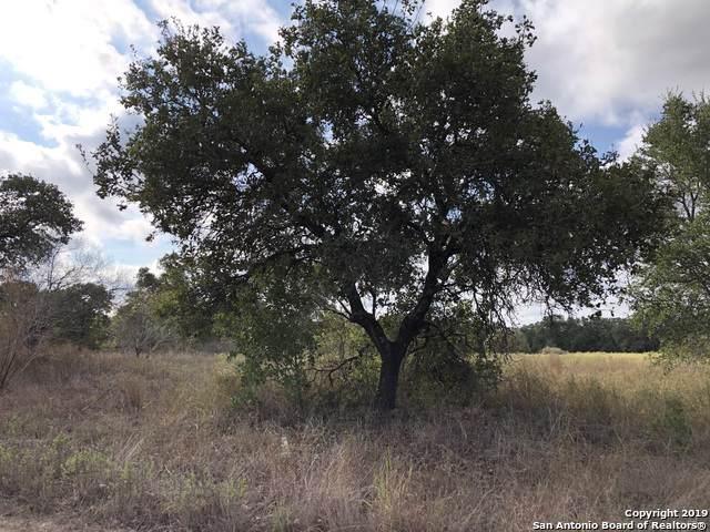 537 Spur Ridge, San Antonio, TX 78264 (MLS #1418573) :: Vivid Realty