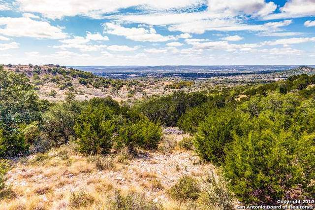 LOT 33&34R Painted Sky N, Comfort, TX 78013 (#1418609) :: The Perry Henderson Group at Berkshire Hathaway Texas Realty