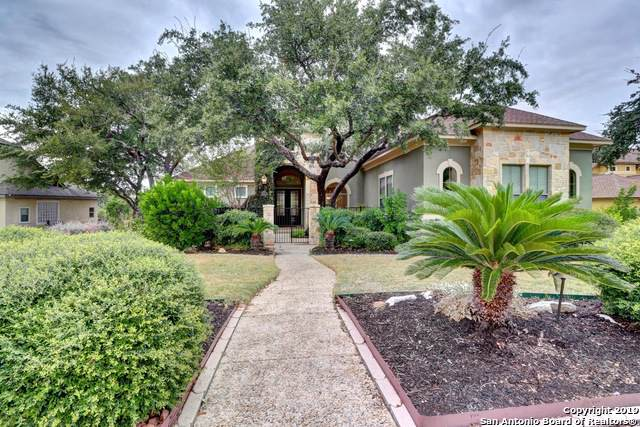 24011 Gray Cyn, San Antonio, TX 78258 (MLS #1418627) :: Alexis Weigand Real Estate Group