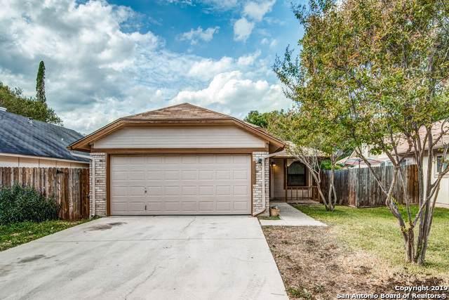 12015 Stoney Bridge, San Antonio, TX 78247 (MLS #1418678) :: Alexis Weigand Real Estate Group