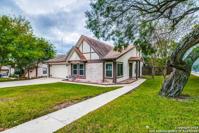 5407 Maple Vista, San Antonio, TX 78247 (MLS #1418790) :: Alexis Weigand Real Estate Group