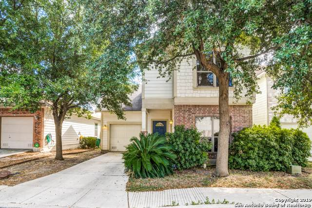 6130 Pecan Tree, San Antonio, TX 78240 (MLS #1418802) :: Alexis Weigand Real Estate Group