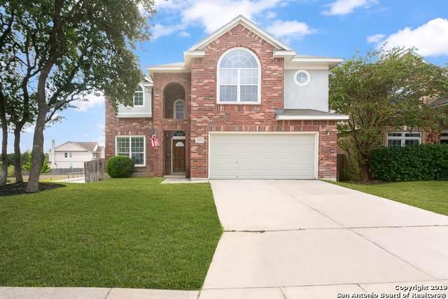 22703 Cardigan Chase, San Antonio, TX 78260 (MLS #1418804) :: Vivid Realty