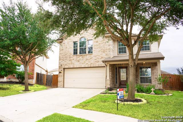 7610 Ariel Hill, San Antonio, TX 78252 (MLS #1418891) :: The Gradiz Group