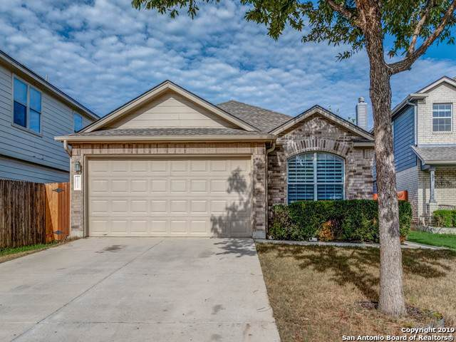 10115 Roseangel Ln, Helotes, TX 78023 (MLS #1418924) :: Alexis Weigand Real Estate Group