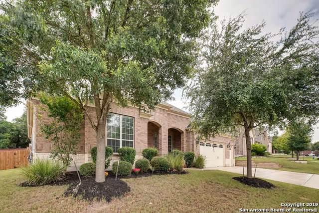 12230 Prince Solms, San Antonio, TX 78253 (MLS #1418939) :: The Castillo Group