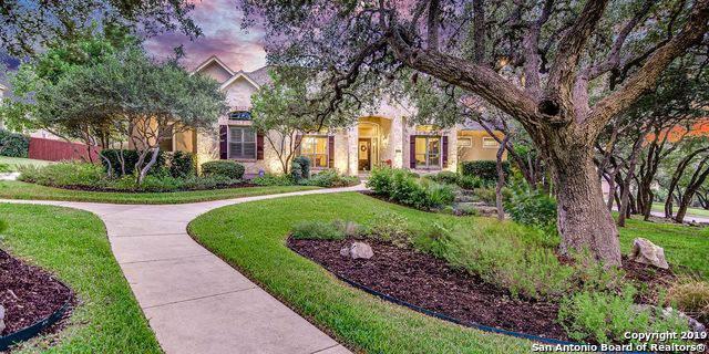 21227 Elm Ridge Ct, San Antonio, TX 78258 (MLS #1418971) :: NewHomePrograms.com LLC