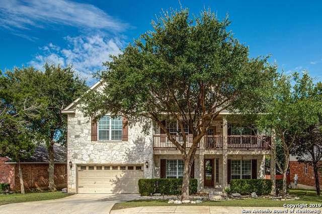 2019 Laurel Park, San Antonio, TX 78260 (MLS #1419061) :: Alexis Weigand Real Estate Group