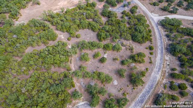 LOT 9 Rayner Ranch Blvd, Spring Branch, TX 78070 (MLS #1419068) :: Laura Yznaga | Hometeam of America