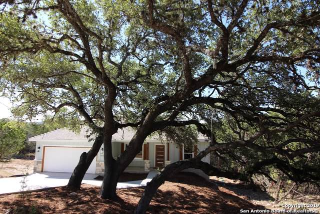 143 Palm, Spring Branch, TX 78070 (MLS #1419097) :: Laura Yznaga | Hometeam of America