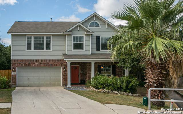 555 Willow Grove Dr, San Antonio, TX 78245 (#1419124) :: The Perry Henderson Group at Berkshire Hathaway Texas Realty