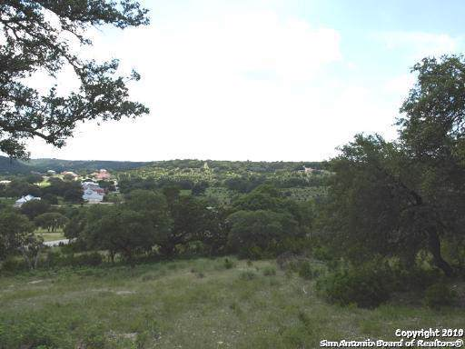 232 Wild Turkey Blvd, Boerne, TX 78006 (MLS #1419273) :: The Mullen Group | RE/MAX Access