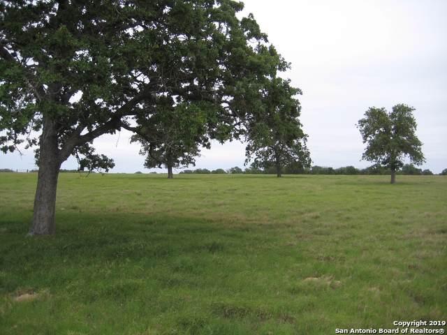 1082 County Road 317, La Vernia, TX 78121 (MLS #1419452) :: BHGRE HomeCity