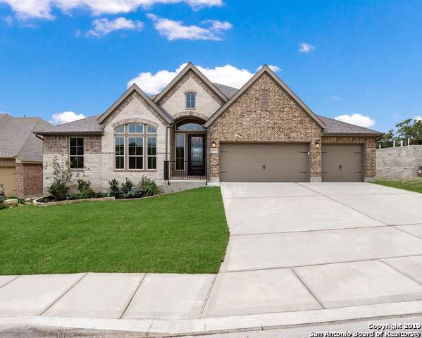 25819 Scenic Rock, San Antonio, TX 78255 (MLS #1419734) :: Alexis Weigand Real Estate Group