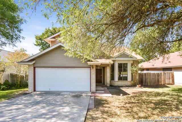 8043 Sunshine Trail Dr, San Antonio, TX 78244 (MLS #1419742) :: Alexis Weigand Real Estate Group