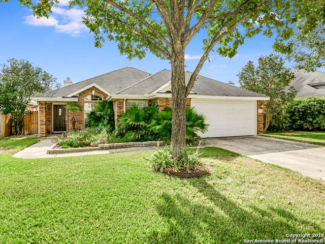 20206 Grail Quest, San Antonio, TX 78258 (#1419769) :: The Perry Henderson Group at Berkshire Hathaway Texas Realty