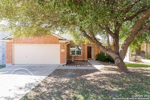 10915 Wilson Oaks, San Antonio, TX 78249 (#1419844) :: The Perry Henderson Group at Berkshire Hathaway Texas Realty