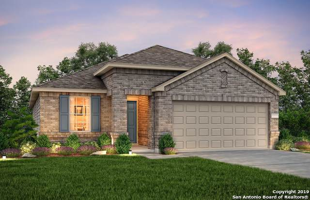 420 Holly Bush, New Braunfels, TX 78130 (#1419894) :: The Perry Henderson Group at Berkshire Hathaway Texas Realty