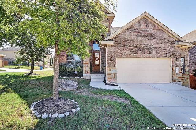 702 Aucuba Falls, San Antonio, TX 78260 (#1419932) :: The Perry Henderson Group at Berkshire Hathaway Texas Realty