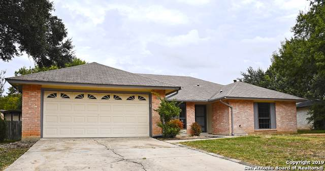 3539 Oakheath, San Antonio, TX 78247 (MLS #1420055) :: Alexis Weigand Real Estate Group