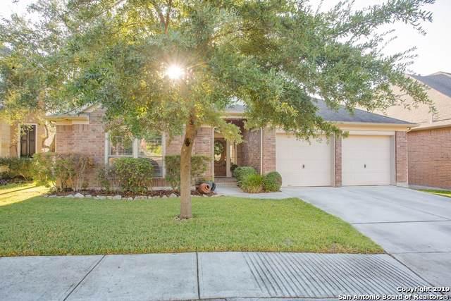 27022 Spiral Canyon, San Antonio, TX 78261 (#1420184) :: The Perry Henderson Group at Berkshire Hathaway Texas Realty