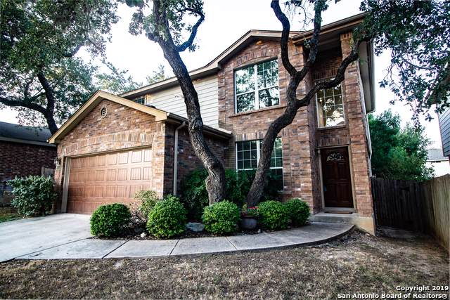 15938 Drexel Run, San Antonio, TX 78247 (MLS #1420217) :: Niemeyer & Associates, REALTORS®