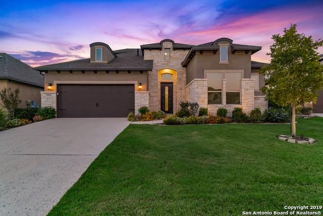 22931 Canasta, San Antonio, TX 78261 (#1420259) :: The Perry Henderson Group at Berkshire Hathaway Texas Realty