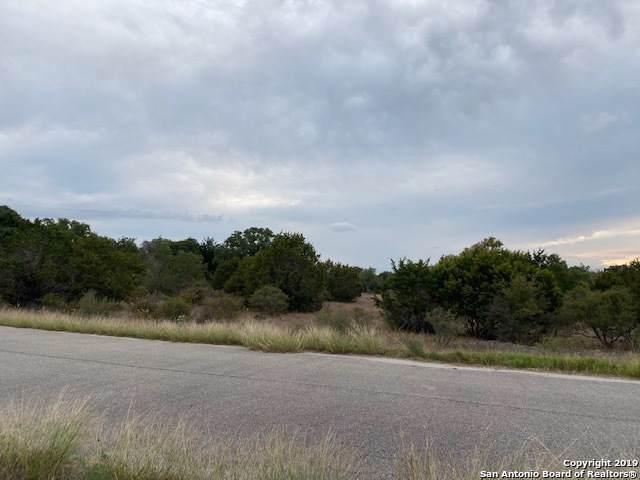 117 Heron Pass, Spring Branch, TX 78070 (MLS #1420293) :: Tom White Group