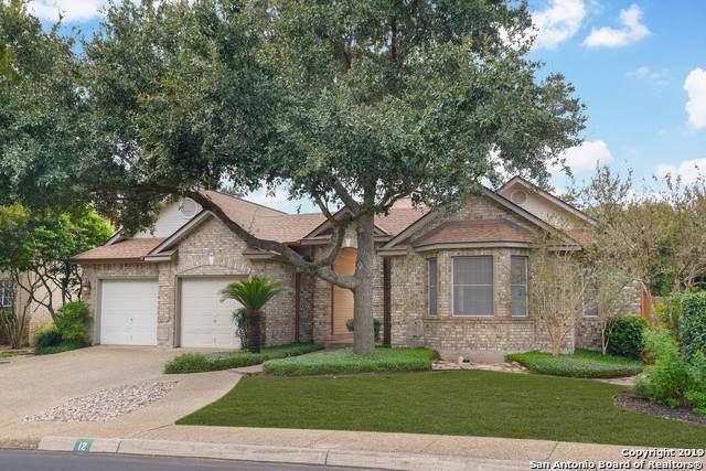 12 Cutter Green Dr, San Antonio, TX 78248 (MLS #1420484) :: Carter Fine Homes - Keller Williams Heritage