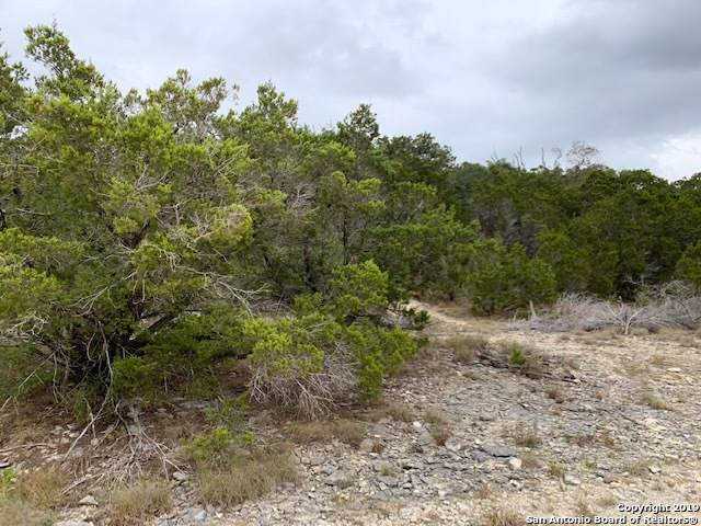 0 Contour Dr Lot 10, Spring Branch, TX 78070 (MLS #1420545) :: Alexis Weigand Real Estate Group