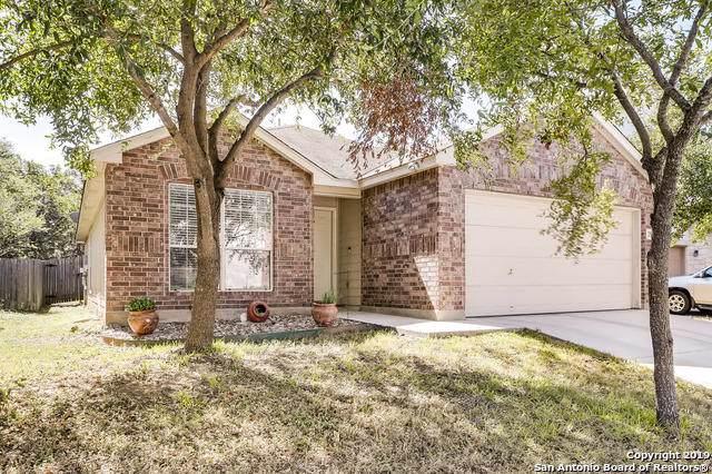 2514 Silverton Wind, San Antonio, TX 78261 (#1420550) :: The Perry Henderson Group at Berkshire Hathaway Texas Realty