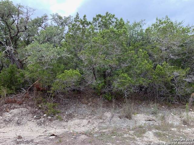 LOT 43 Kim Lee, Spring Branch, TX 78070 (MLS #1420556) :: Alexis Weigand Real Estate Group