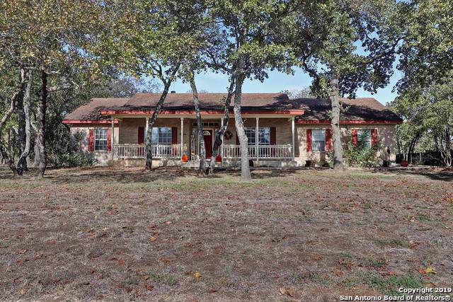 1220 Country View Dr, La Vernia, TX 78121 (#1420575) :: The Perry Henderson Group at Berkshire Hathaway Texas Realty