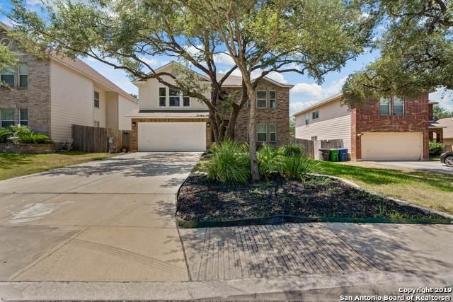 10230 Rainbow Creek, San Antonio, TX 78245 (MLS #1420675) :: Alexis Weigand Real Estate Group