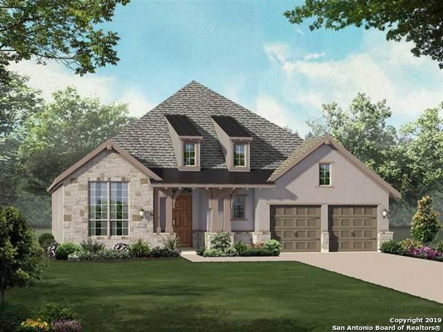 24515 Emilia Way, San Antonio, TX 78261 (MLS #1420750) :: Alexis Weigand Real Estate Group