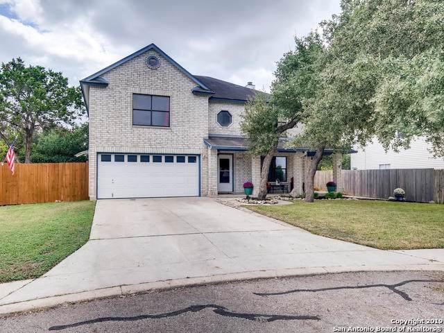 16109 Turnstone Ln, San Antonio, TX 78247 (#1420775) :: The Perry Henderson Group at Berkshire Hathaway Texas Realty
