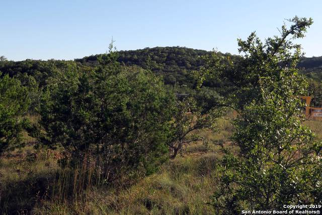 11453 Cat Springs, Boerne, TX 78006 (MLS #1420800) :: Alexis Weigand Real Estate Group