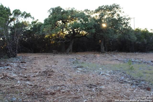 24603 Ripple Way, San Antonio, TX 78266 (MLS #1420838) :: Alexis Weigand Real Estate Group