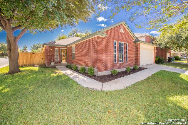 5214 Stormy Autumn, San Antonio, TX 78247 (MLS #1420927) :: NewHomePrograms.com LLC
